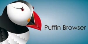 Lead_Image_Puffin-840x420