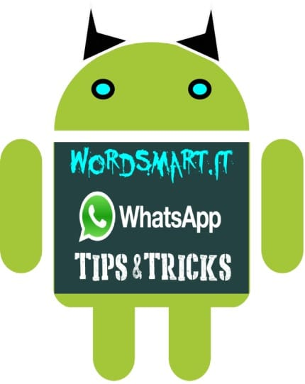 Come Impostare Contatore Whatsapp WordSmart