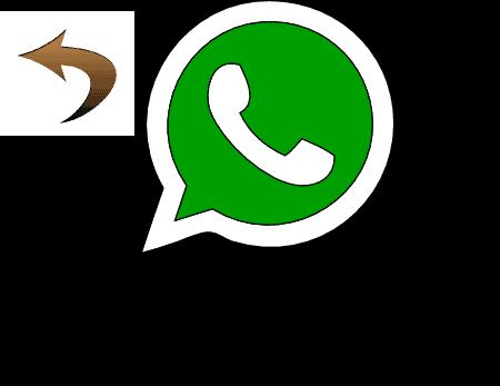 Ripristinare Conversazioni Archiviate Whatsapp