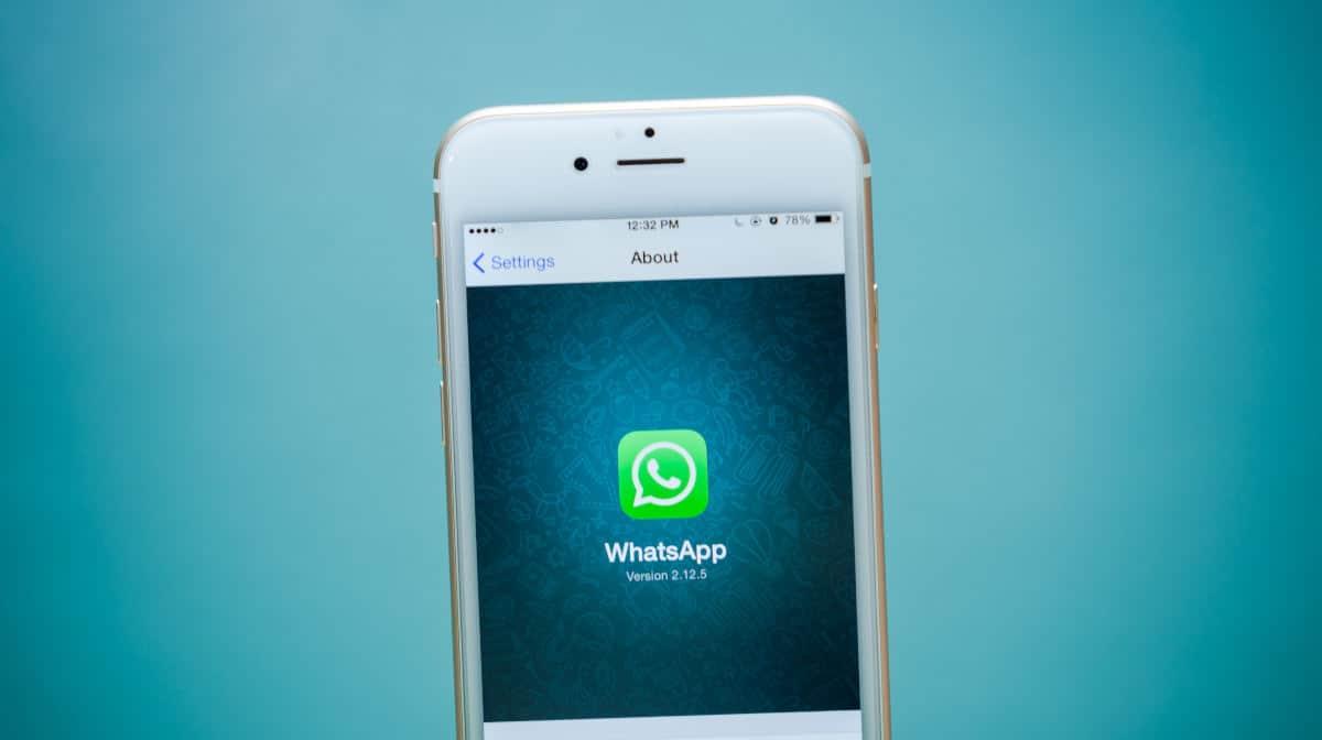 Come attivare le notifiche push su WhatsApp con iPhone