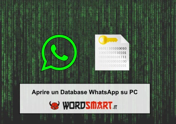 aprire database whatsapp su pc