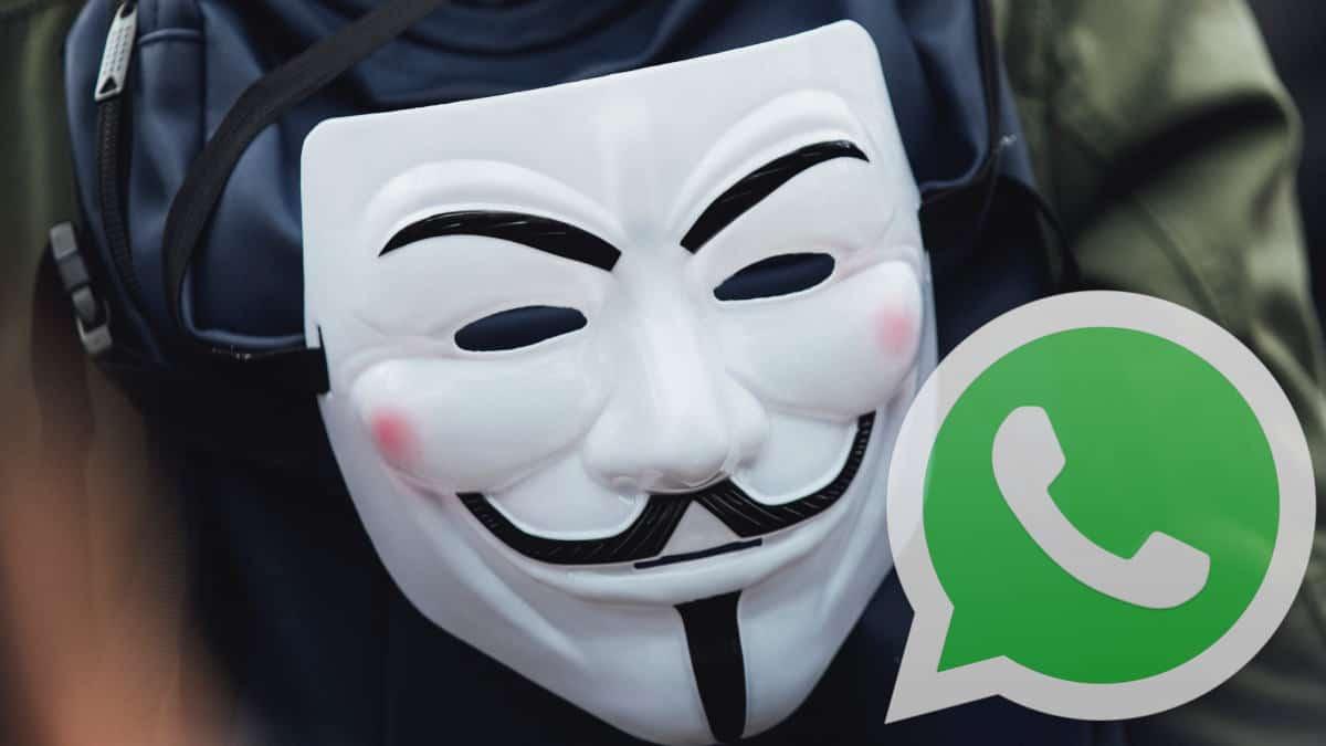 come chattare in anonimo su WhatsApp