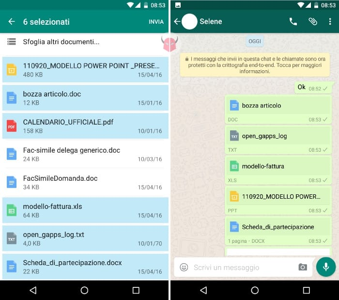 inviare documenti criptati WhatsApp chat con crittografia end-to-end
