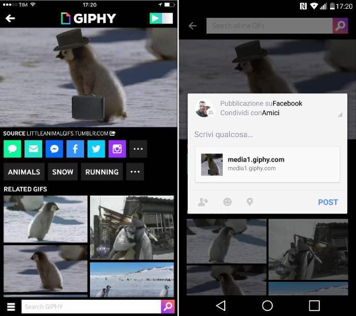 come caricare GIF su Facebook iOS e Android