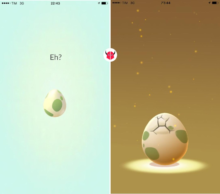 come far schiudere le uova in Pokemon Go nascita