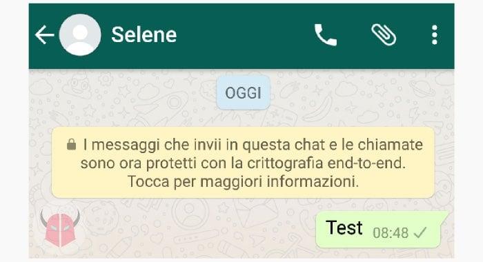 cosa significa una spunta grigia su WhatsApp chat