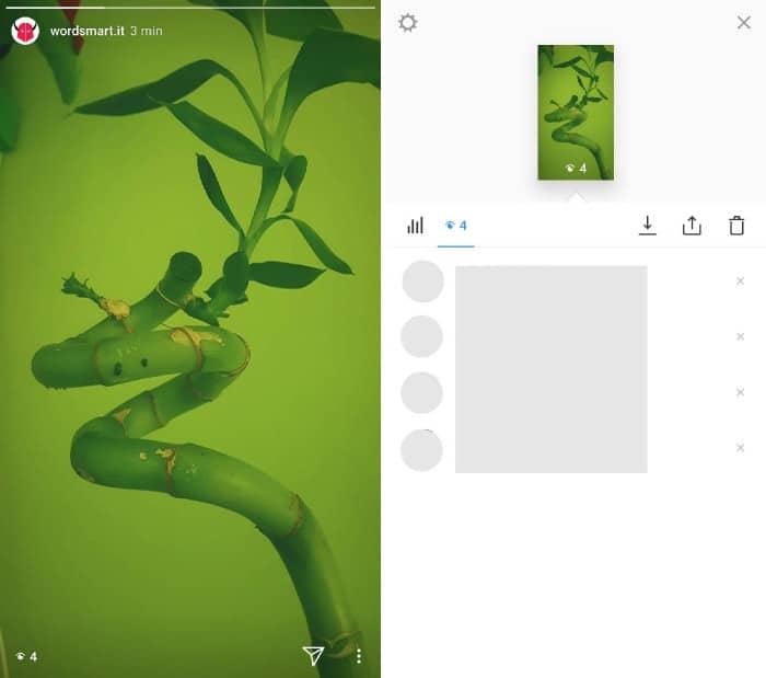 come vedere chi guarda il tuo profilo Instagram visualizzazioni Storia