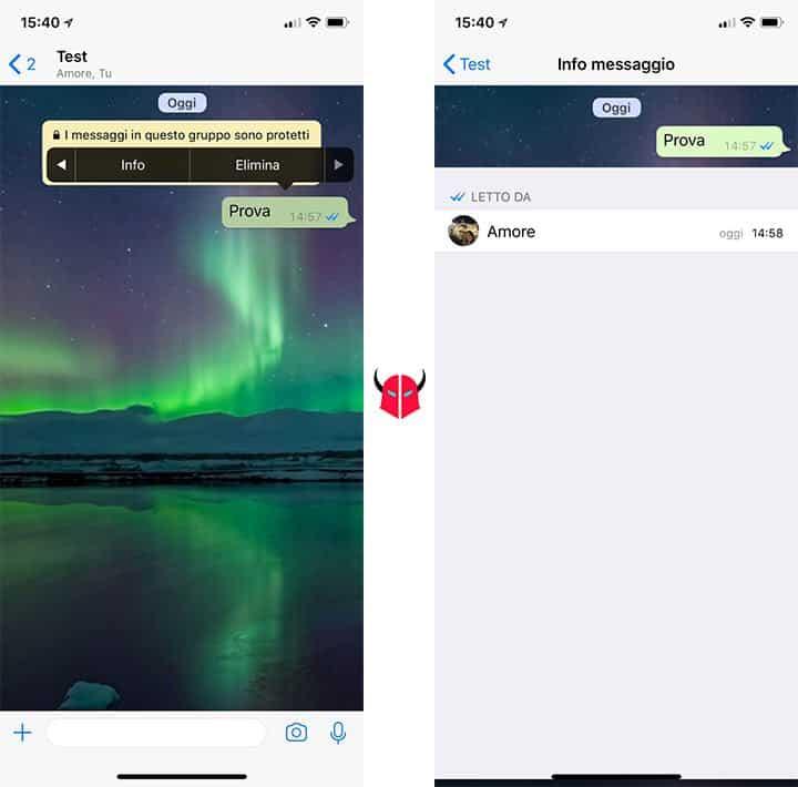 come vedere se un messaggio WhatsApp è stato letto doppia spunta blu gruppi