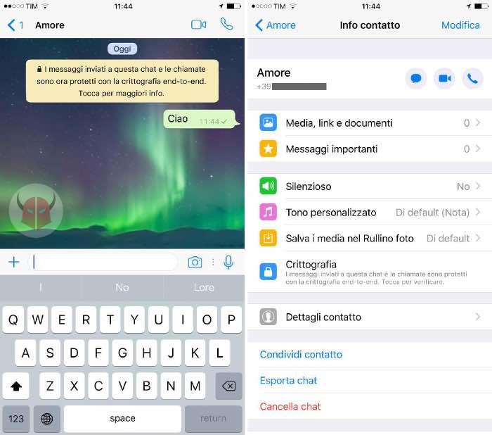contatti bloccati WhatsApp dettagli invisibili