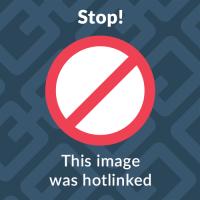 eliminare account TikTok schermata Password dimenticata