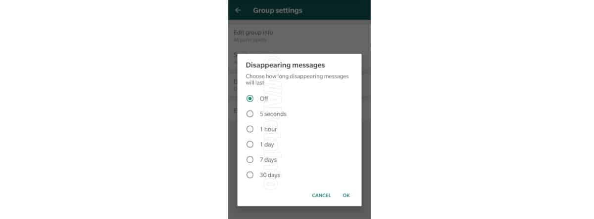 come inviare messaggi WhatsApp che si autodistruggono timer