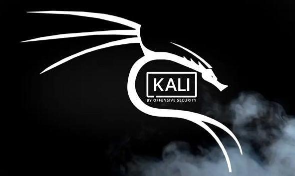 miglior distro Linux pentesting Kali Linux