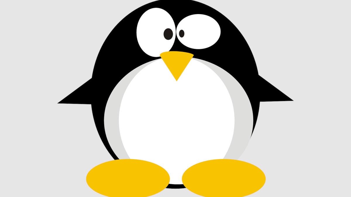 miglior distro Linux