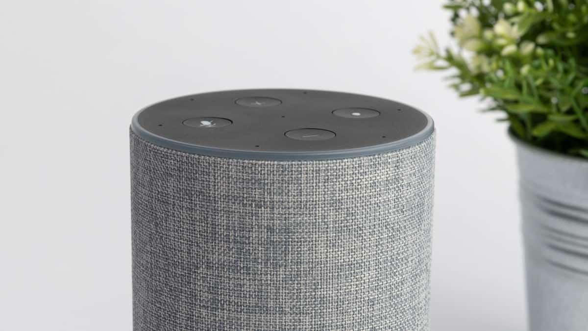 come ascoltare musica con Alexa problemi audio