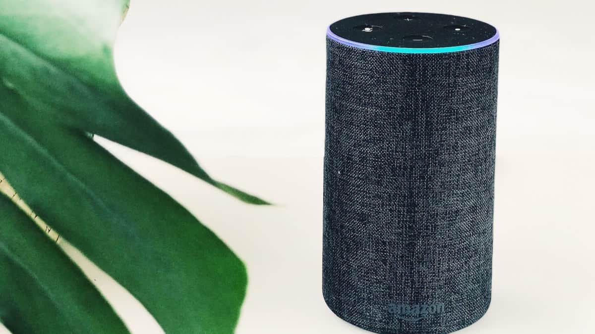 come collegare Alexa al Wi-Fi