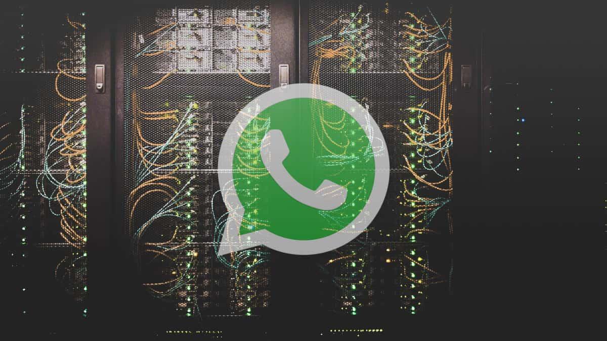 consumo di WhatsApp