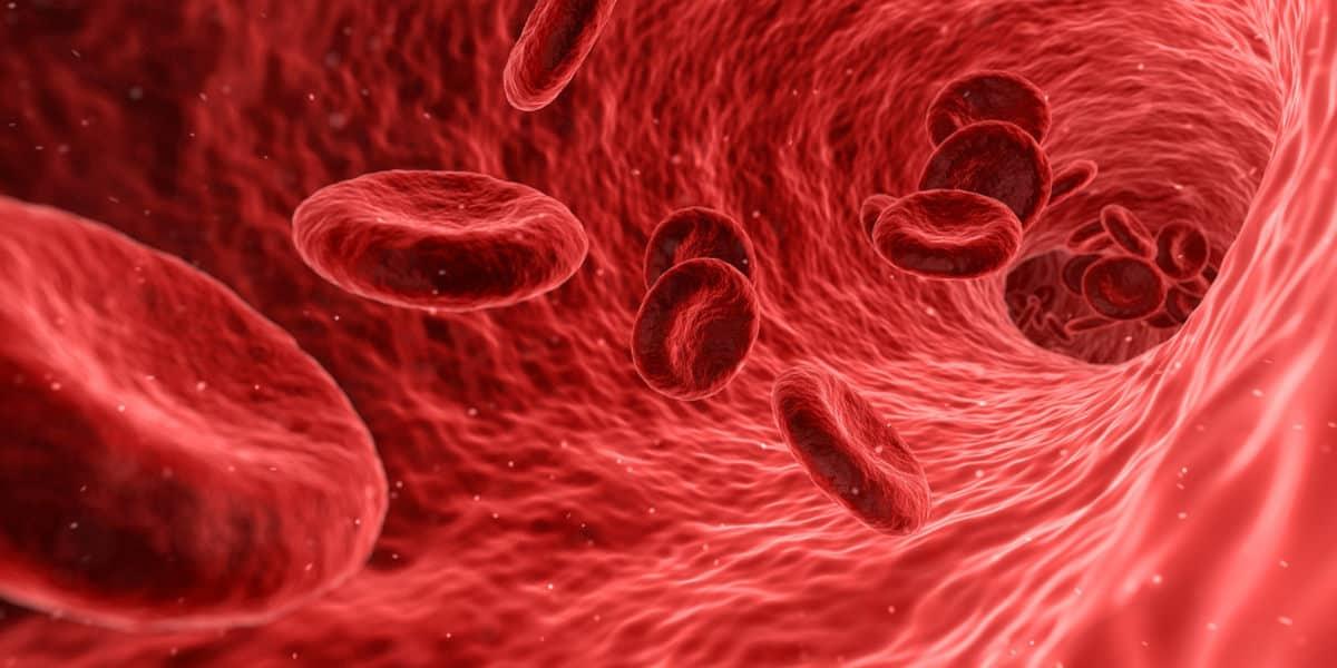 come misurare la pressione sanguigna a casa arteria flusso sanguigno