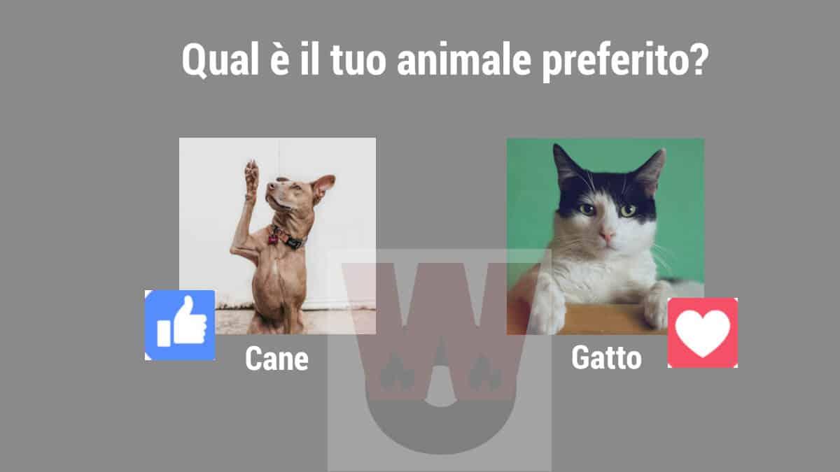 creare un sondaggio su Facebook con foto esempio personalizzato