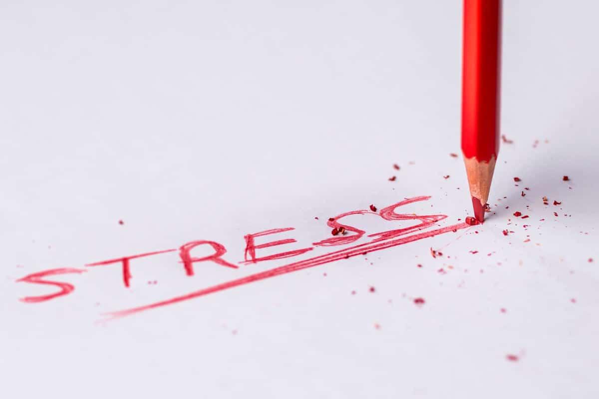 gestire lo stress concetto di stress