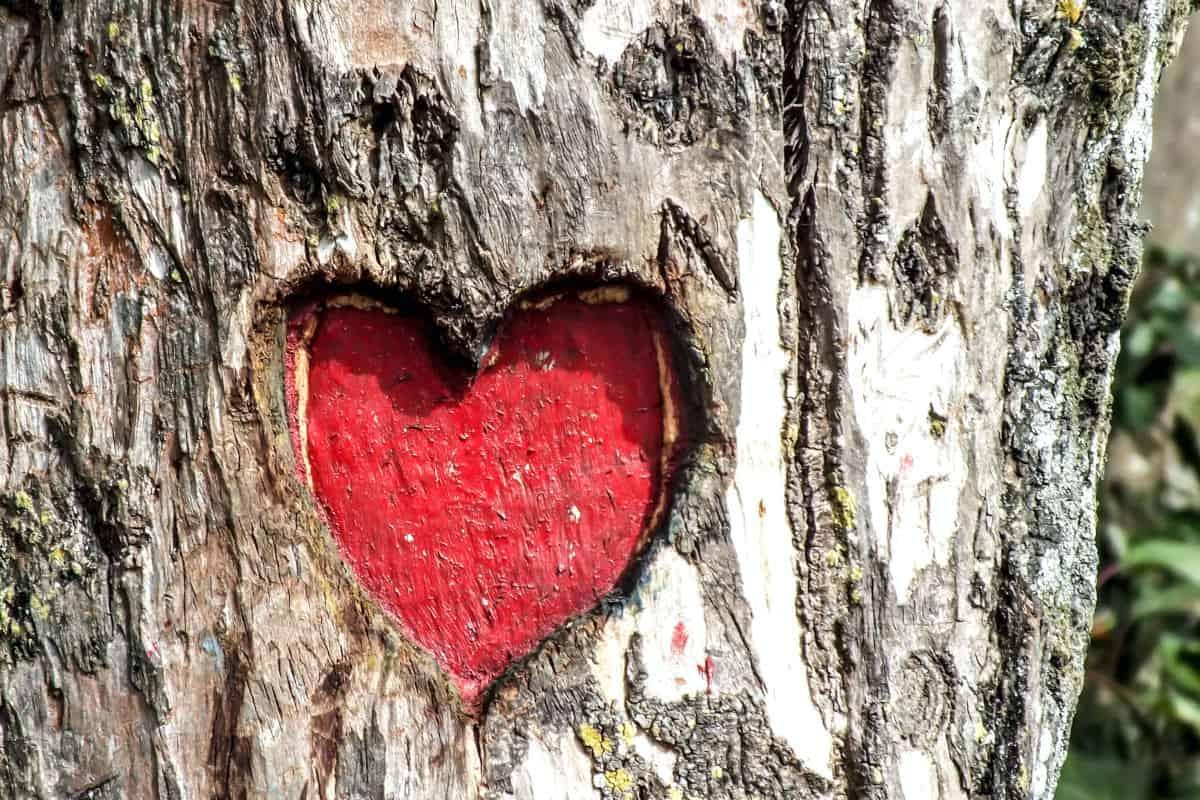 capire se piaci veramente a una persona concetto di amore duraturo