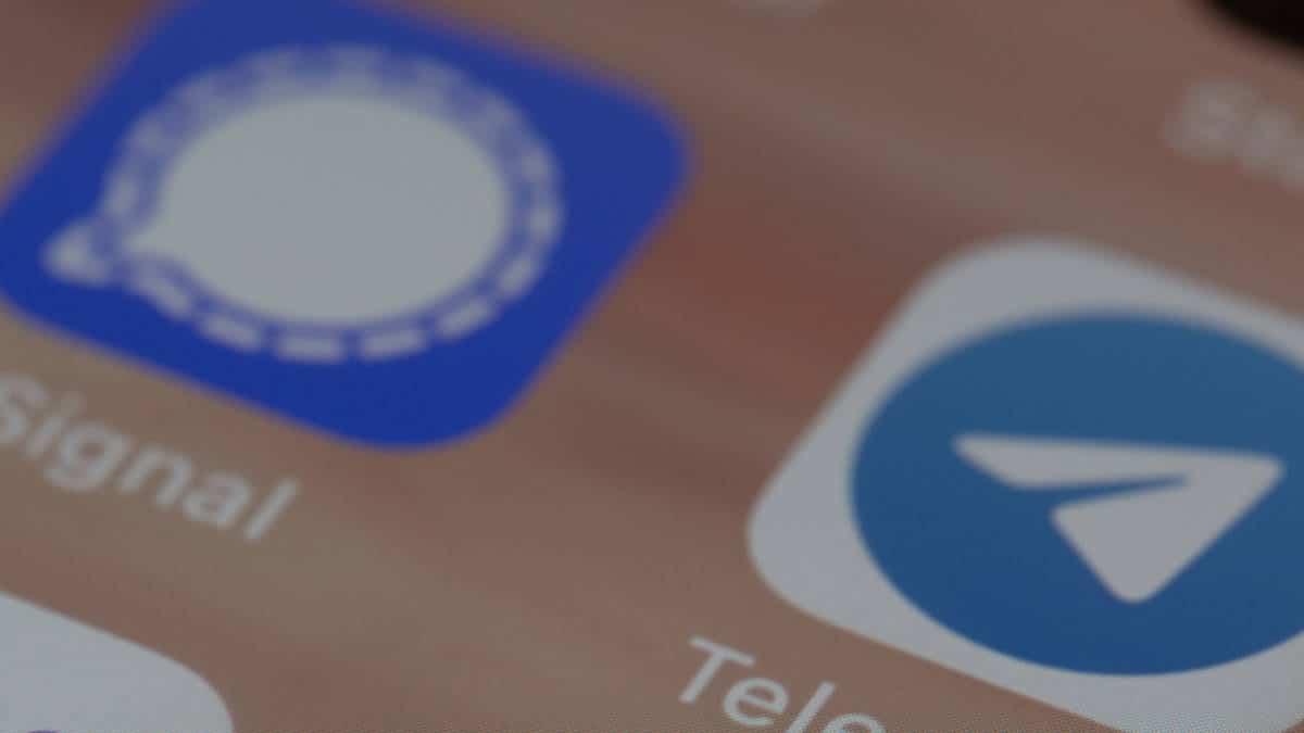 app Signal e Telegram su schermo del telefono