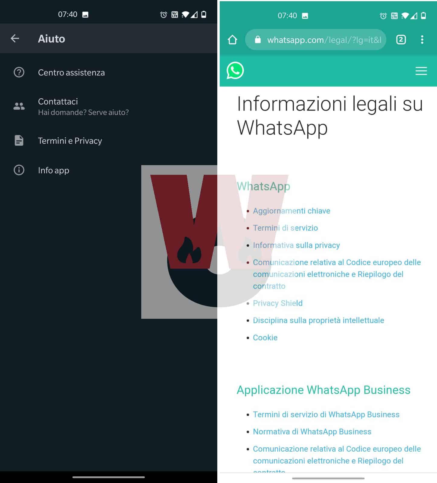 lettura termini attuali WhatsApp da app