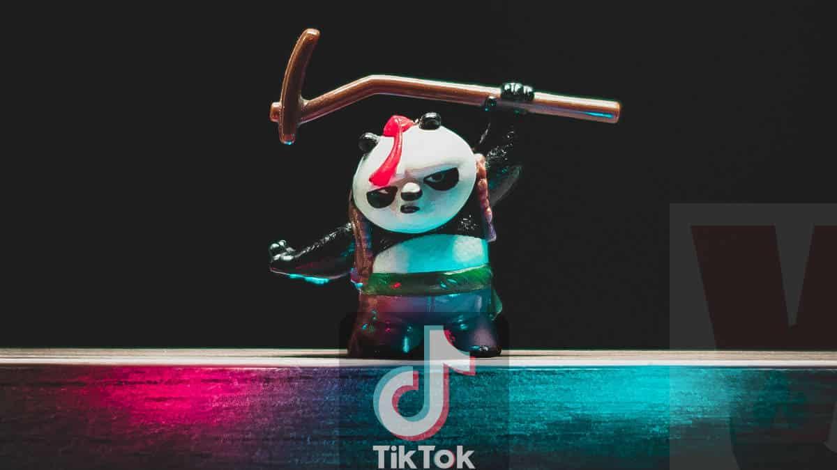 personaggio animazione panda con luci TikTok foto dinamiche